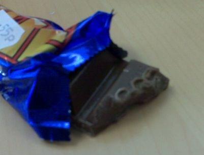 Yorkie Chocolate