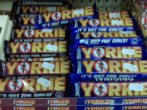 Yorkie Display